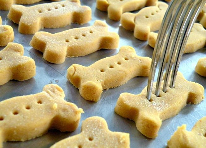Pumpkin Dog Biscuits: 2 eggs, 1/2 cup canned pumpkin, 2 tablespoons dry milk, 1/4 teaspoon sea salt, 2 1/2 cups brown rice flour *, 1 teaspoon dried parsley (optional)