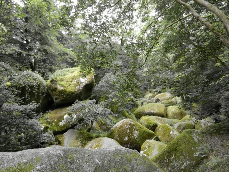Où ? Dans le parc naturel régional d'Armorique, à trois heures de Nantes.