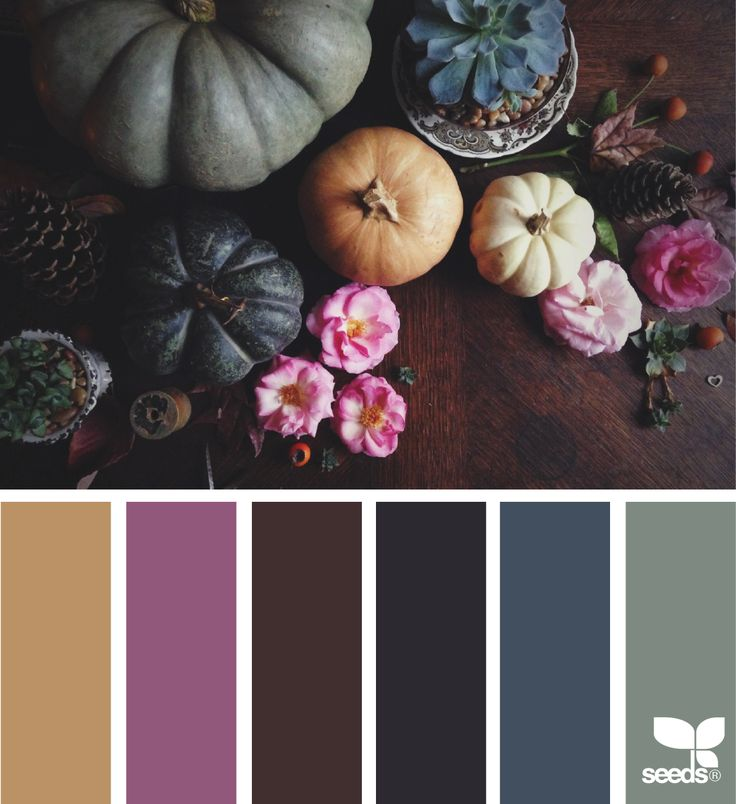 { Autumn Hues } image via: @kellyish | featured in the seasonal Color Atlas | Design Seeds + Color Atlas by Archroma®