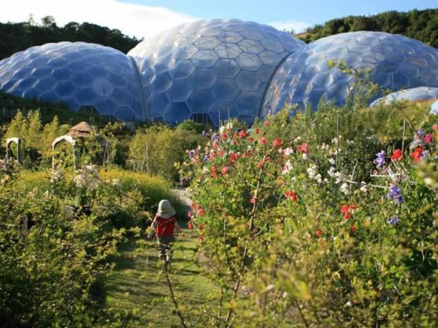 Eden project care homes