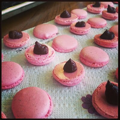 Raspberry Dark Chocolate Macaroons! | Cooking and Baking Ideas | Pint ...
