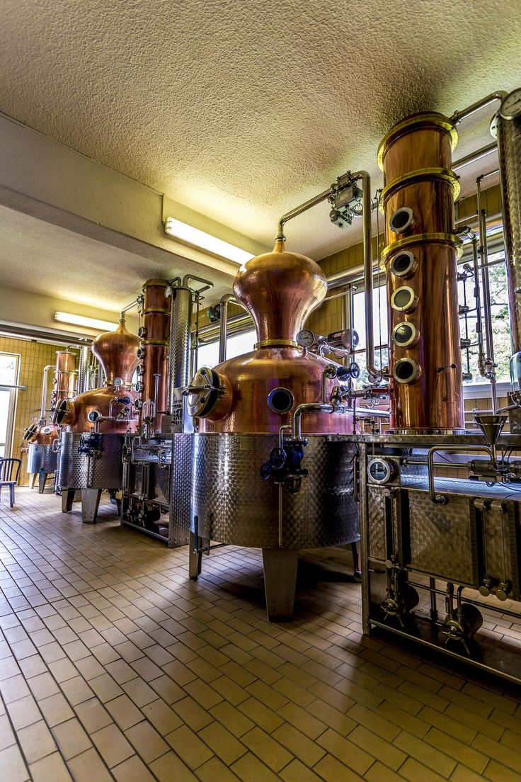 This pair of new 1,000-liter German copper pot stills was purchased in 2004, and the fermented fruit is double-distilled. Maturation takes place in steel tanks for two to five years, followed by filtering and bottling on-site.