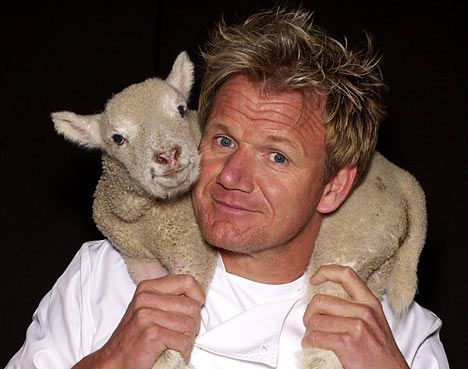 Chefs should be fined for cooking out of season imported food, says Gordon Ramsay.  (It's true!!)