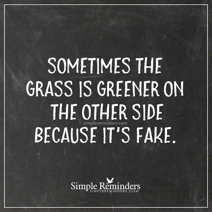 Sometimes the grass is greener on the other side because it's fake.