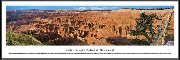 Cedar Breaks National Park Panoramic Picture Framed