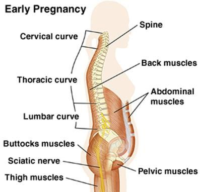 Hip problems during pregnancy