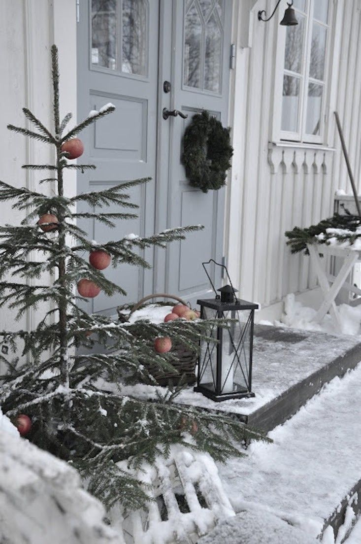 Winter curb appeal hang apples from tree branches
