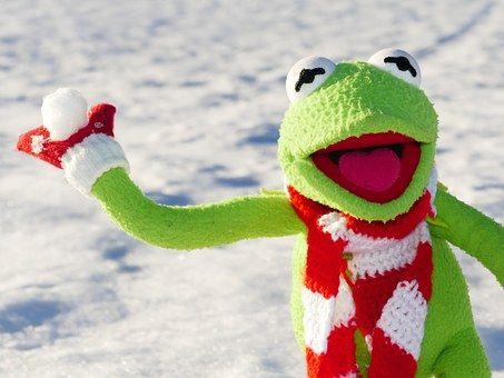 Kermit, Frosch, Schneeball, Werfen