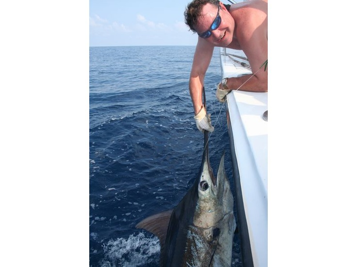 17 best images about destin fishing charters fifth for Deep sea fishing destin