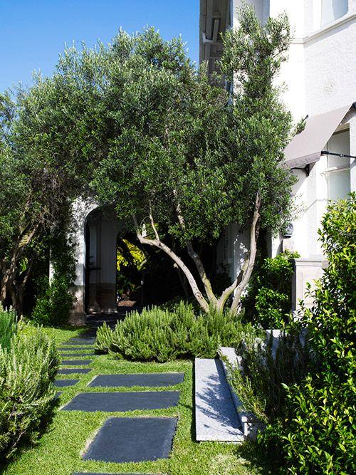 Garden by William Dangar & Associates