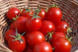 Descubre por qué el tomate es tan saludable