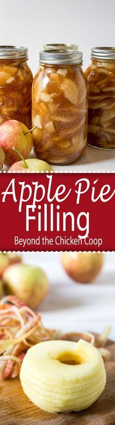 Apple Pie Filling. Preserve your fresh apples for a quick dessert you can use all year long.