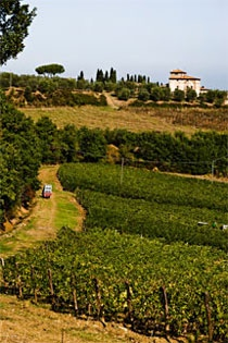 join this tour if you like Italy and tuscan's real taste. A real experience off the beaten path.