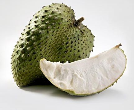 Antioxydant Naturel Puissant | Graviola corossol bio ...