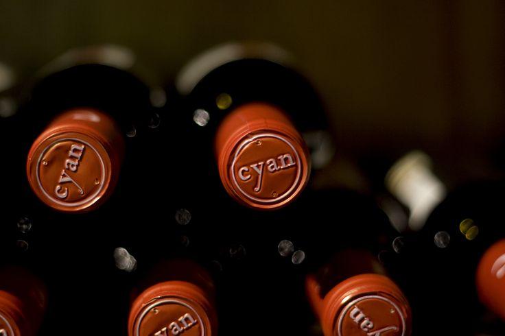 En Restaurante La Espadaña contamos con una cava con los mejores vinos de Grupo Matarromera de las D.O Toro, Cigales, Ribera del Duero y Rueda. www.restauranteespadana.es