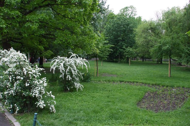 If you come to visit Bucharest, a walk through Cismigiu Park, in the center of the city, is a must. Especially in spring (the photo was taken in April, when green is even greener)!