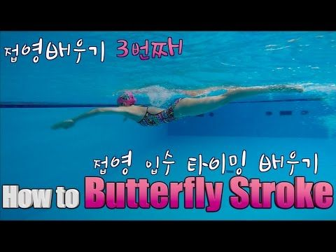 Butterfly swimming technique. How to swim butterfly. Beginner | Swim tutorial - YouTube