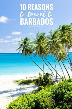 10 reasons to travel to Barbados. People flock to the tropical paradise to live the island life, relax, re-energise and refocus.  So is it the perfect beaches, enticing food or enchanting festivals which has millions flocking to Barbados each year? #Barba