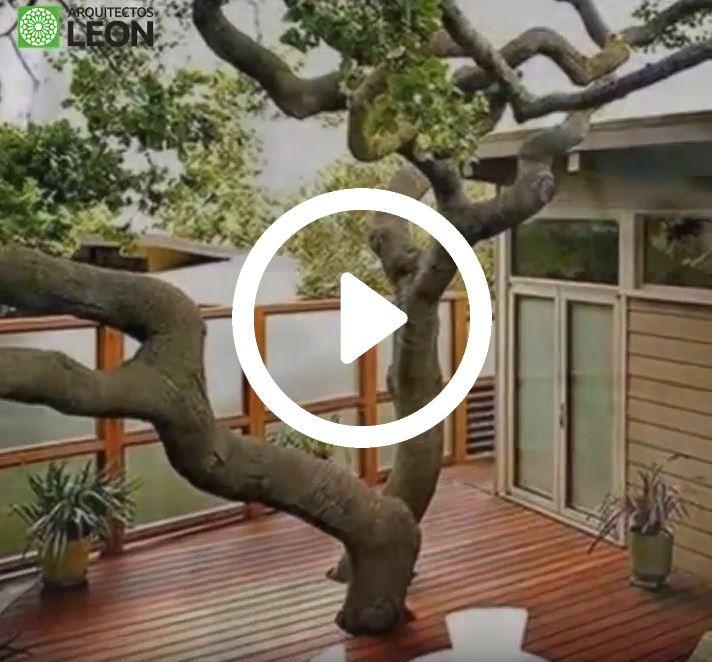 La deforestación es un grave problema que nos afecta a todos. En este video algunos arquitectos se han enfrentado a ella con éxito. El post completo aquí:http://arquitectosleon10.es/11-edificios-cuyos-arquitectos-negaron-cortar-arboles #arquitectura #arquitectos #eco #videos
