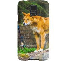 Dingo on the Alert Samsung Galaxy Case/Skin