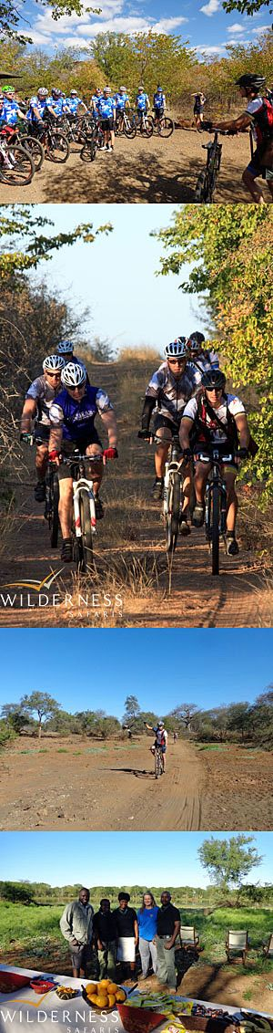 We Are Wilderness - Children in the Wilderness (CITW) recently hosted a corporate group on a serious cycling adventure through the Pafuri area in the northern section of the Kruger National Park. All in all there were 18 cyclists who spent three days cycling through the diverse myriad ecosystems of Pafuri. Click on the image for the full story.
