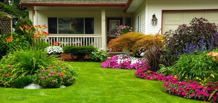 Landscaping: 4 Tips to Instantly Improve Your Yard's Curb Appeal