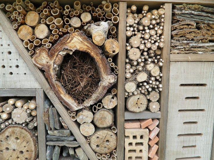Creatief bijenhuis en hommelhuis in bloementuin - Hobby