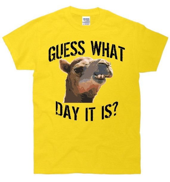 New Custom Guess What Day It Is Camel Hump Day Wednesday Funny Humor