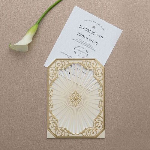 340 best inviting invitations images on pinterest wedding 340 best inviting invitations images on pinterest wedding stationary bridal invitations and invitations stopboris Choice Image