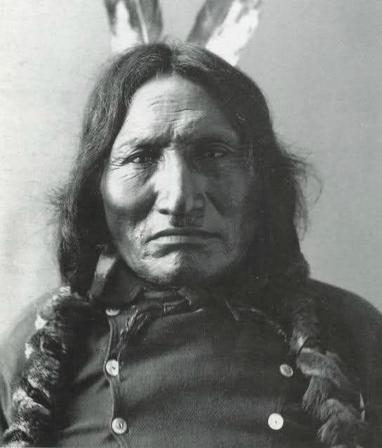 Caballo Loco, Custer y la guerra de las llanuras
