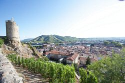 TWA-0012109 © WestPix Avalon river cruise France. A view over Tournon on one of the many walking forays off Poetry II.
