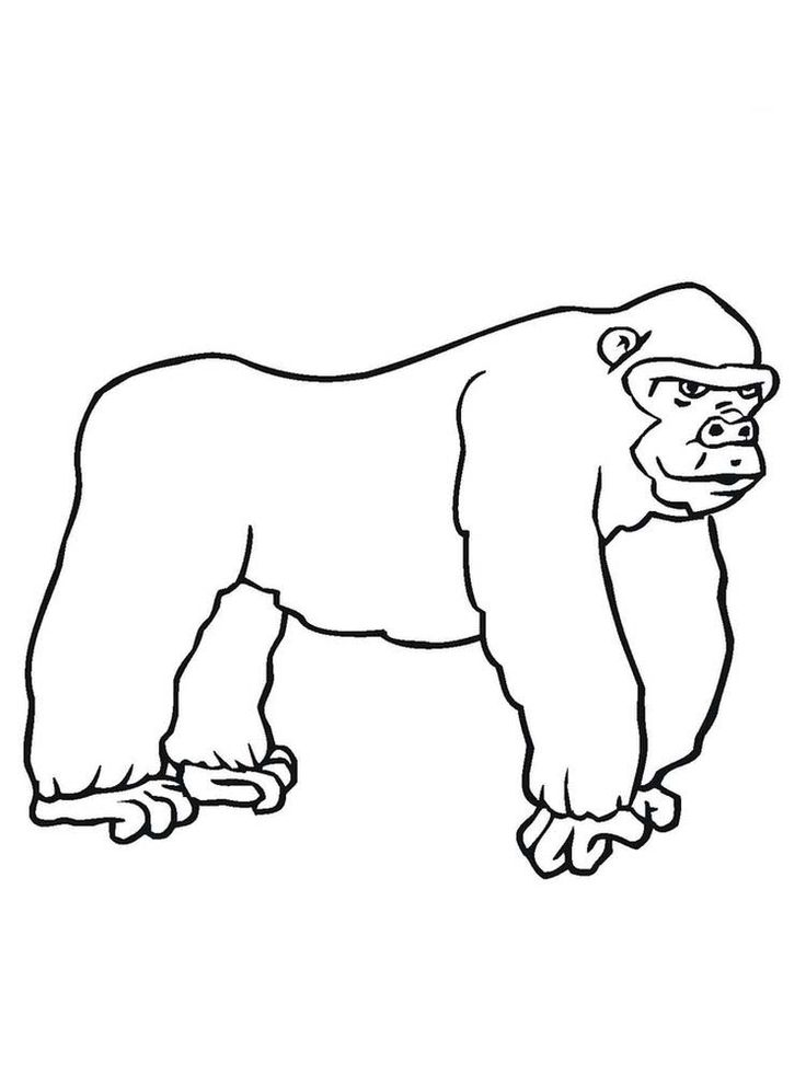 Gorilla Coloring Pages Easy. The gorilla is the second ...