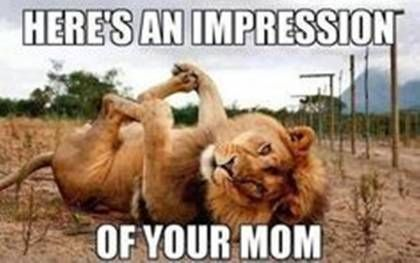 """The Best """"Your Mom"""" Jokes in Internet History"""