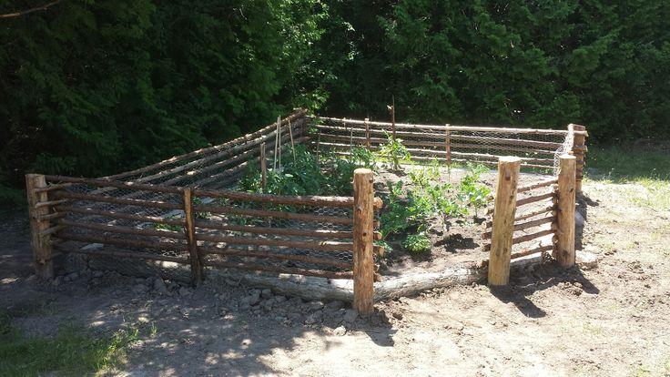 Rabbit proof garden fence.  Still needs the gate.