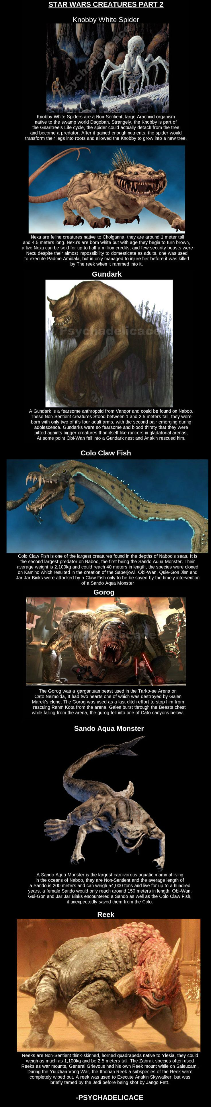 Star Wars Creatures part 2 // funny pictures - funny photos - funny images - funny pics - funny quotes - #lol #humor #funnypictures