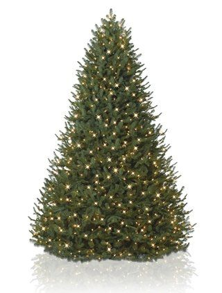5.5′ BH Balsam Fir Artificial Christmas Tree – Clear  http://www.fivedollarmarket.com/5-5-bh-balsam-fir-artificial-christmas-tree-clear/