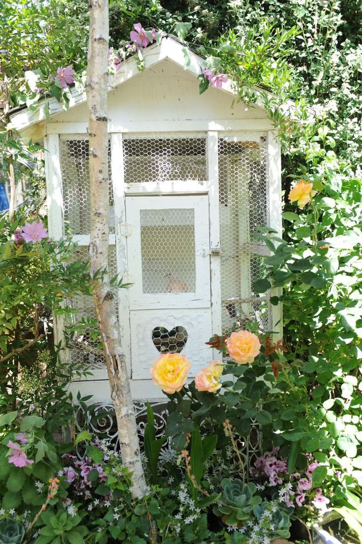 Dove house: Doors, Flowers Gardens, Little House, Chicken Wire, Cute Chicken Coops, Around The World, Gardens House, Gardens Sheds, Little Cottages