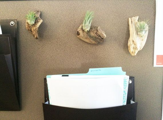 Best 25 cubicle accessories ideas on pinterest work for Cubicle planter box