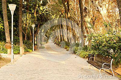 Beautiful sunny afternoon in Parque de la Alameda Andalucia Malaga Spain. Picture taken in december 2015.