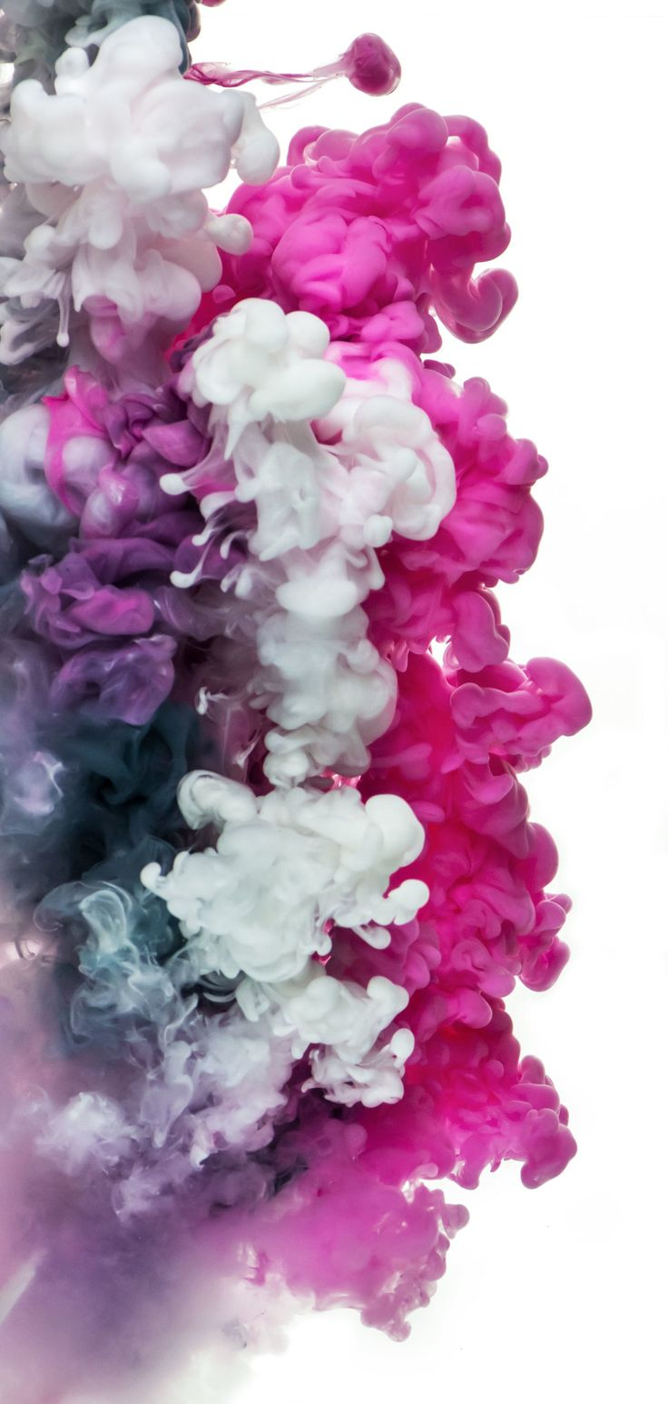 Jessica Kenyon Ink Photography – Pink, Gray, White