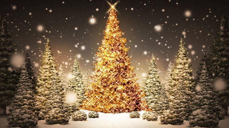 Fond d'écran de Noël illustrant la description du séjour de Noël à Flarken en laponie Suédoise