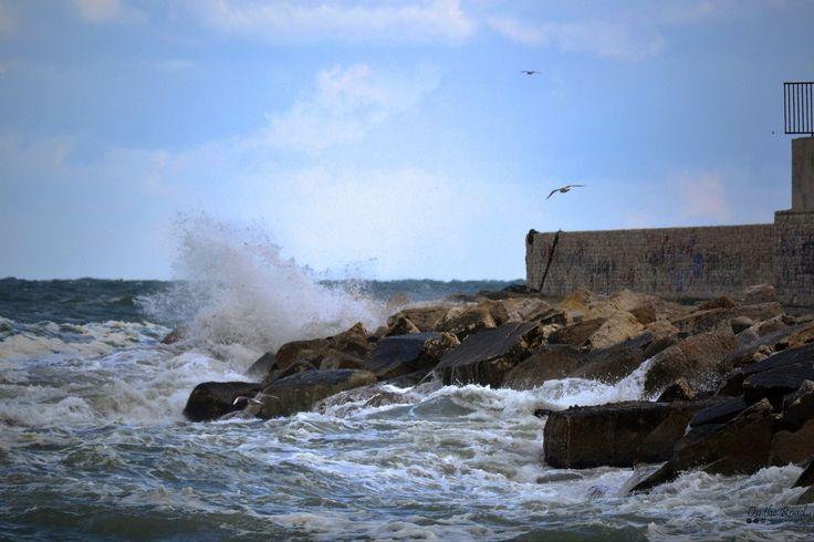 The restless Adriatic, near the Port of Bari.