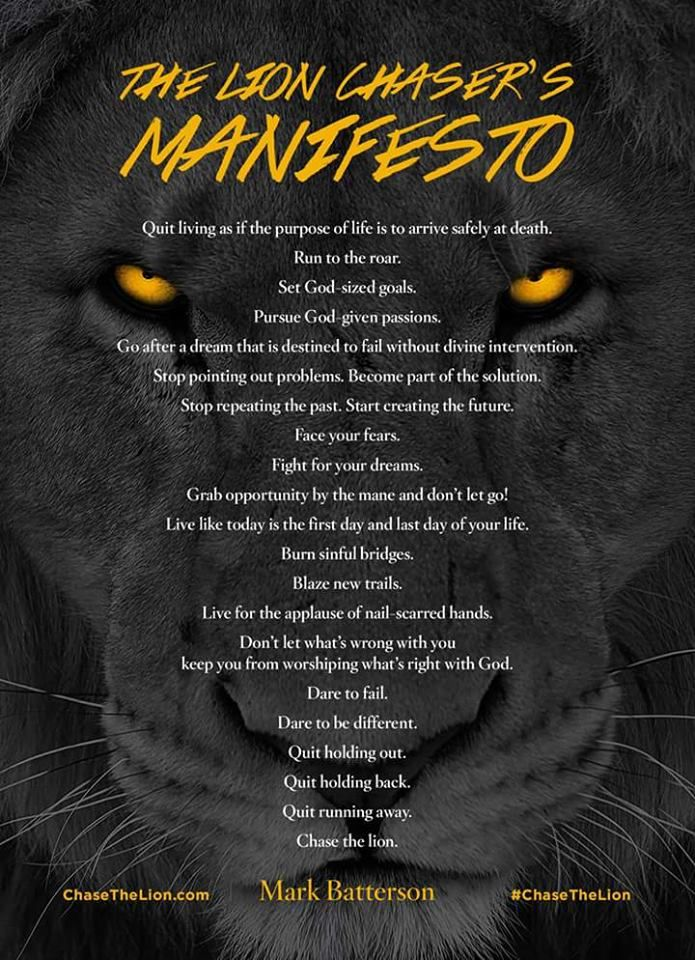 The Lion Chaser S Manifesto Mark Batterson Lion Quotes