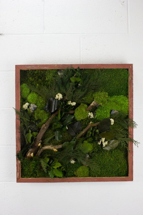 Tree Branches  Water free green wall art moss and by FlowerboxUSA