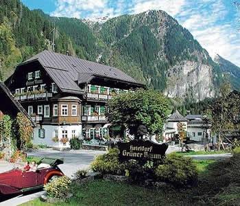 Want to go back. Gruner Baum Hotel