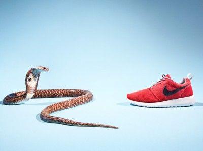 Sneakers gaan de strijd aan met enge dieren