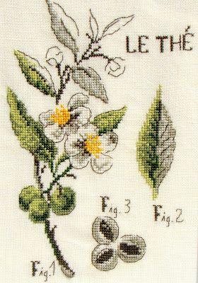 """Moja pasja, mój świat: Zielnik - Le Thé - """"Chocolat, thé, café"""" - Véronique Enginger"""