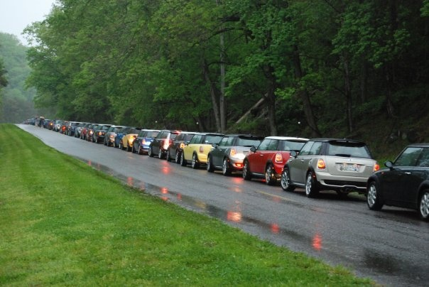 MINIs on the Dragon  The Dragon is a 11 mile stretch of Highway called US 129 that goes thru parts of North Carolina and Tennessee and has 318 curves. The first weekend of May each year, MINI Cooper owners from all over the US and Canada meet up to enjoy taming the dragon and celebrating all that is MINI