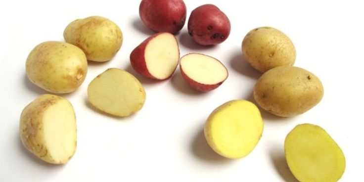 Potatoes 101: A guide to every type of potato you need to know. (And how to use them in your cooking and recipes)