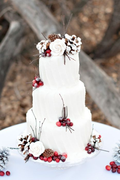Winter Wedding Cake with cranberries, twigs and snowy pinecones.